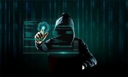 在黑网视讯数据未传回该怎么办?联系我们出黑